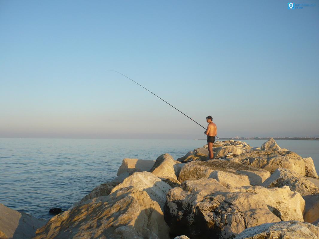 pesca nelle marche