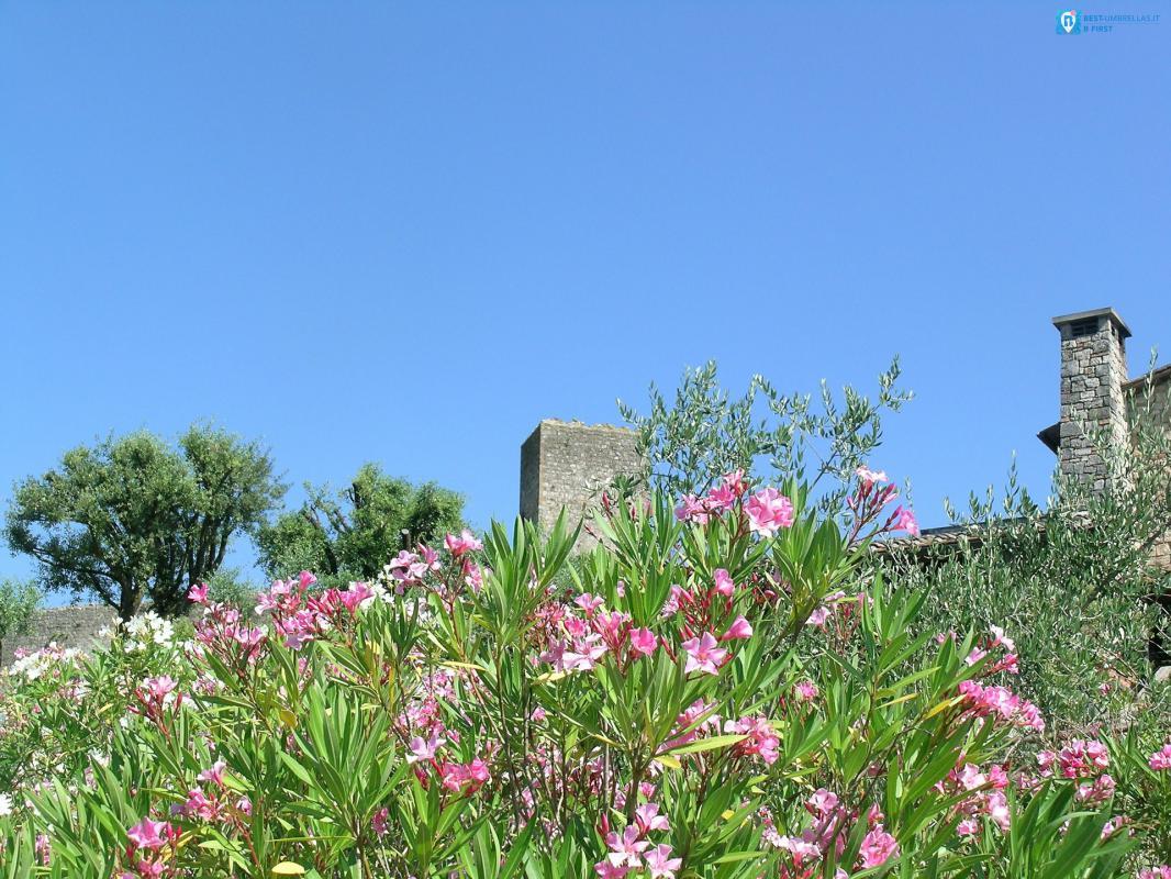 bellezze naturali in toscana